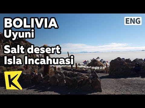 【K】Bolivia Travel-Uyuni[볼리비아 여행-우유니]소금사막의 물고기 섬/Isla Incahuasi/Salt desert/Echinopsis/Isla Pescador