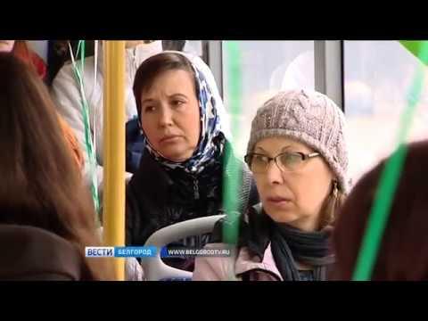 белгород знакомства девушка оплата