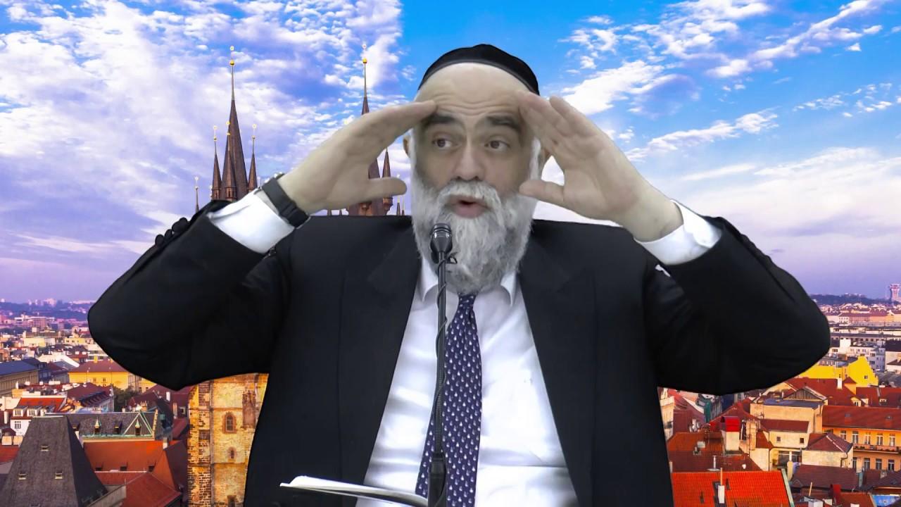 לטעום את החיים: חכמה בגויים תאמין - הרב משה פינטו HD