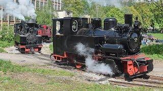 Žamberská kavalkáda parních lokomotiv 18.5.2019