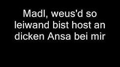 Georg Danzer - Ollas leiwaund (Lyrics)