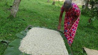 Village Foods ❤ Cooking Mung Bean Milk Rice by Grandma for Devotees
