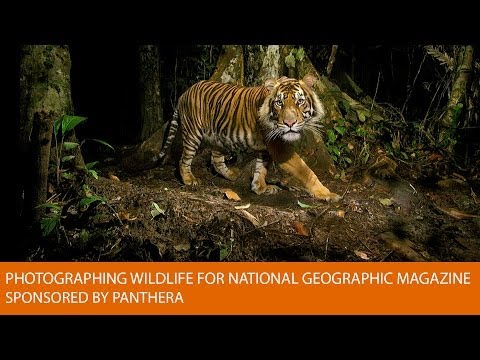 Photographing Wildlife for National Geographic Magazine