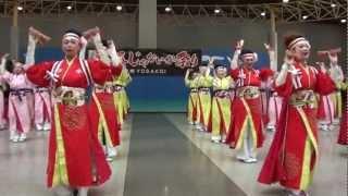 ほにや(正調よさこい鳴子踊り) ~ゑぇじゃないか祭り2012