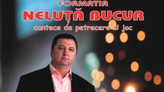 COLAJ MUZICA DE PETRECERE - NELUTA BUCUR 2014