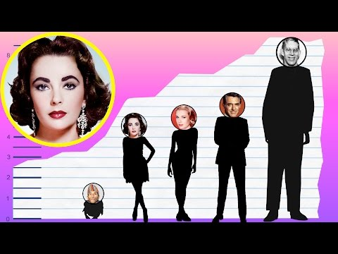 How Tall Is Elizabeth Taylor? - Height Comparison!