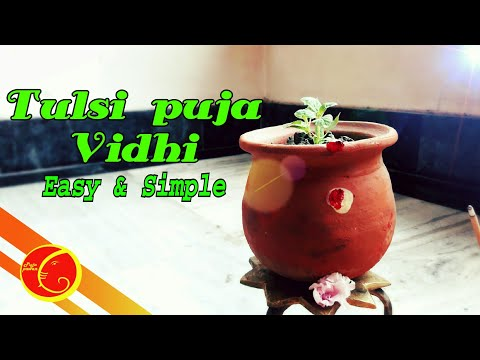 Tulsi Puja Vidhi Easy And Simple 2018 | Tulsi  Puja Mantra And Vidhi| How To Perform Tulsi Puja