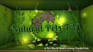 Natural Pets TV: Cats - Episode 4 - Digestion - The System, The Function & It's Health