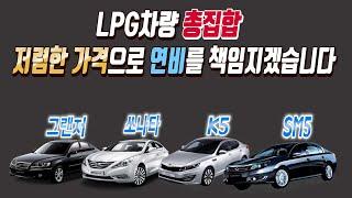 LPG차량 총집합!!! 저렴한 가격으로 연비까지 책임지…