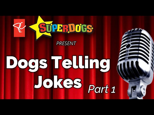 Dogs Telling Jokes: Knock Knock Part One