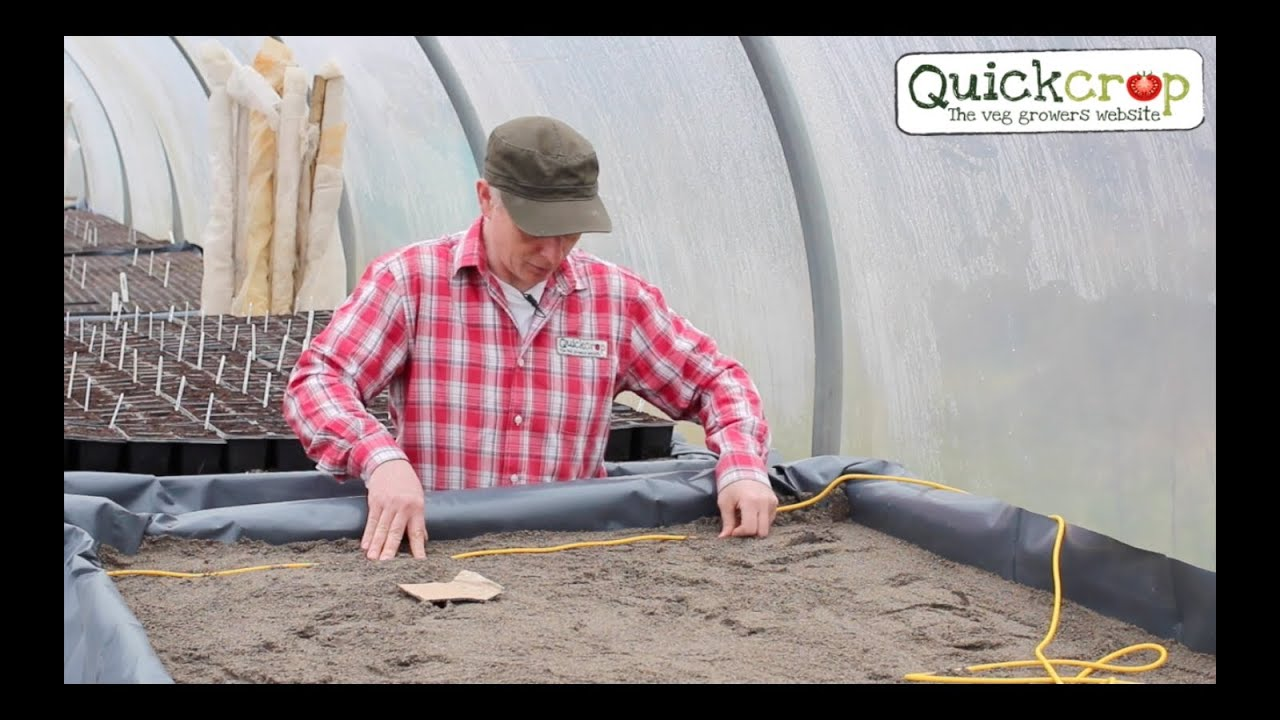 How To Build A Heated Propagation Bench Youtube Diagram Of Wiring Electric Blanket