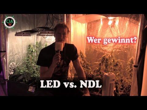 CIA-TV° ermittelt:  OHNE MUSIK - NDL oder LED ...the WINNER is ?