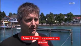 PFAHLBAU AM ATTERSEE NATURSCHAUSPIEL ORF Bericht der Zeitreise August 2015