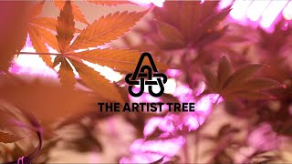 A look inside The Artist Tree - West Hollywood, CA