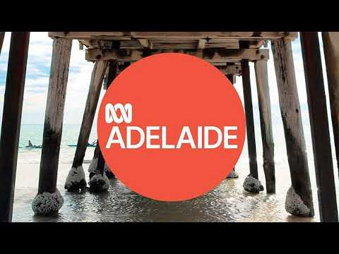 """""""Are you smarter than a Mechatronic Engineer?"""" - 891 Radio Adelaide - Breakfast with Ali Clarke"""