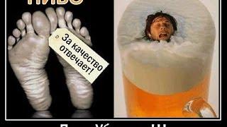 Влияние Пива на Организм Человека(Влияние Пива на Организм Человека. Эксперты считают, что к таким неизлечимым заболеваниям, как рак, часто..., 2014-03-04T11:20:05.000Z)