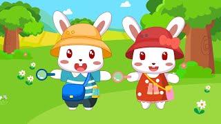兔小贝儿歌 304 宝宝越听越聪明