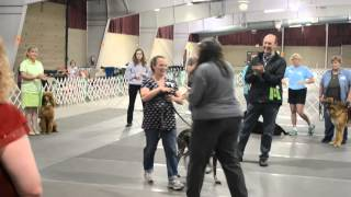 Michigan Dog Training Nosework Student Takes First Place At Ukc Premier