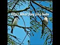 Pikat Jingjing Batu  Mp3 - Mp4 Download