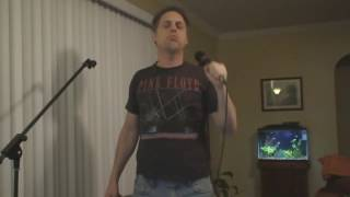 Led Zeppelin - Babe I'm Gonna Leave You (karaoke cover)