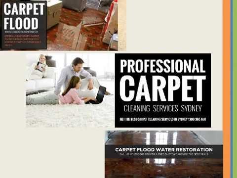 Sydney Carpet Cleaning Company | Melbourne FREE Estimates!