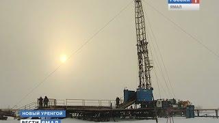 На Ямале загрязнения почвы нефтепродуктами очищают с помощью бактерий, пожирающих нефть(Подробнее: ..., 2014-11-17T16:26:29.000Z)