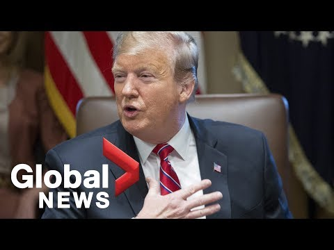 Trump says he's 'not happy' about border security deal Mp3