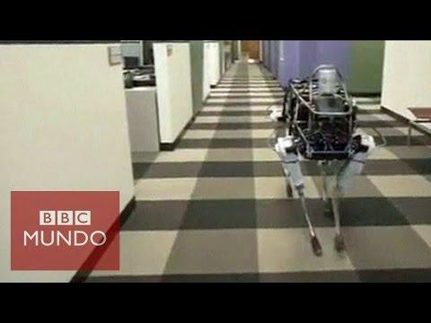 Spot, un perro robot que sube montañas