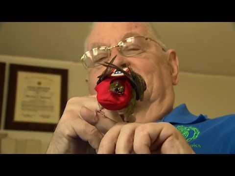Service bird helps veteran find peace