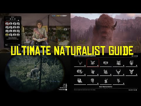 Red Dead Online Ultimate Naturalist Guide, How To Make Money With The Naturalist Role!