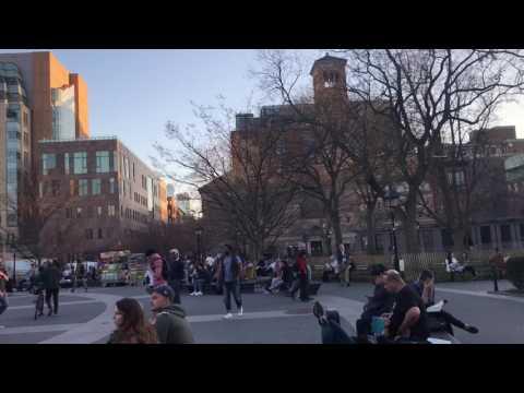 Washington Square park in NYC