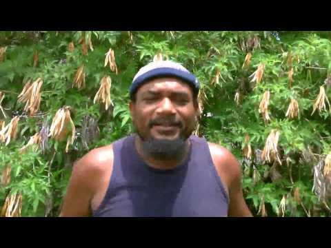 Le Kaf vin-kay J'AI MAL (clip officiel 2014) 974