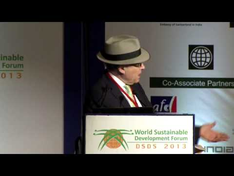 Richard L. Sandor: Markets can be used for more than sustainability - DSDS 2013