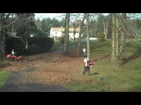 Leaf Removal and yard clean; Chris Orser Landscaping