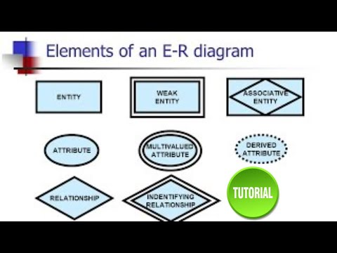 database dbms elements components of e r diagram youtube rh youtube com er diagram dbms in hindi er diagram dbms ppt