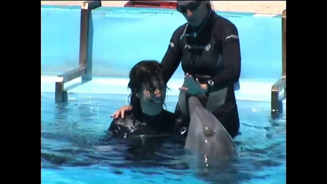 stefania nuota con i delfini youtube