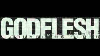 Watch Godflesh Requiem video