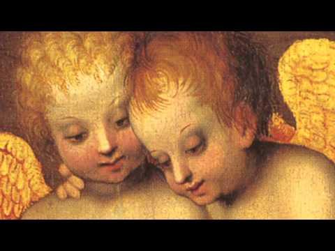 Illuminating Angels: Cherubs