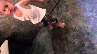 Big Furia - Alofitiminifusi VIDEO OFICIAL.