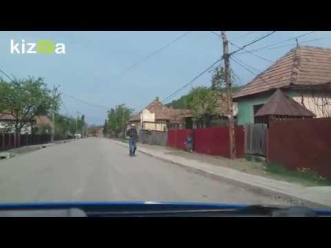 Sat Adrian , Mureș, România