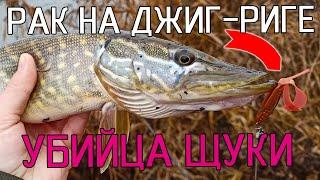 СИЛИКОНОВЫЙ РАК НА ДЖИГ-РИГЕ СВОДИТ ЩУКУ С УМА!!! Зимний спиннинг. Рыбалка на щуку 2020!