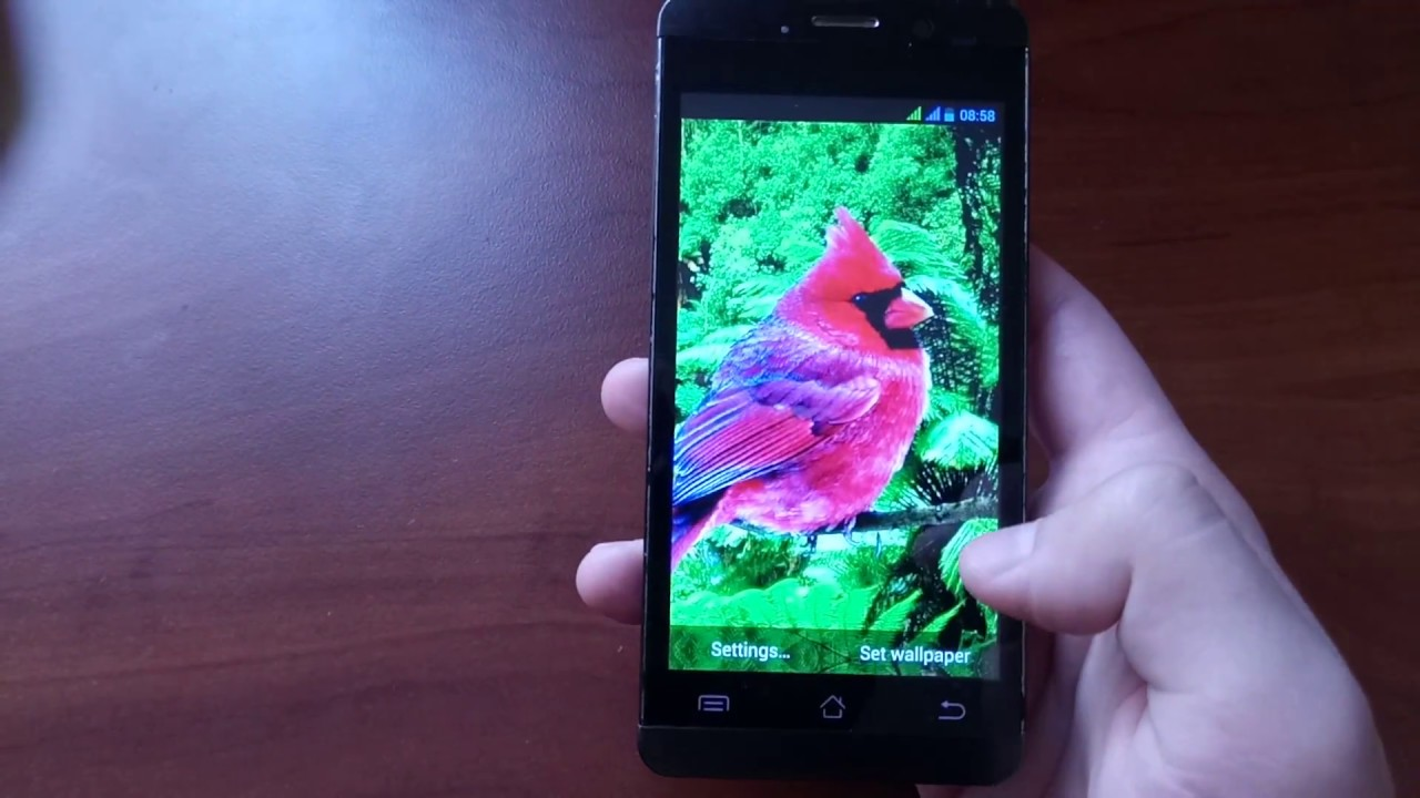 3D birds parallax Live wallpapers | Android Development and