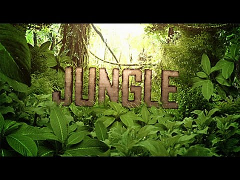 127 - The Jungle