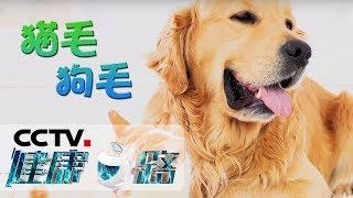 [健康之路]久咳不愈莫小视 咳嗽变异性哮喘的隐蔽性| CCTV科教