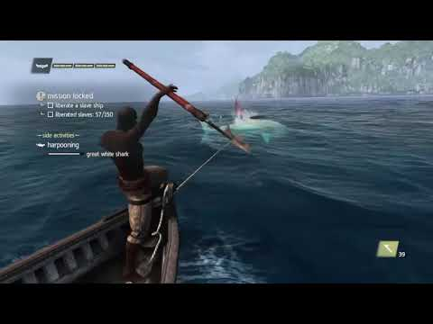 Real Haitian Fishing