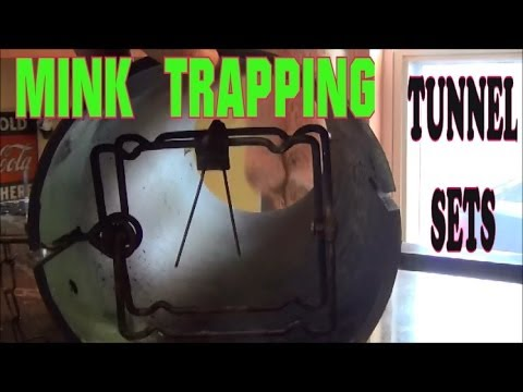 How to Install a Sprinkler System | A DIY Guide from YouTube · Duration:  4 minutes 59 seconds