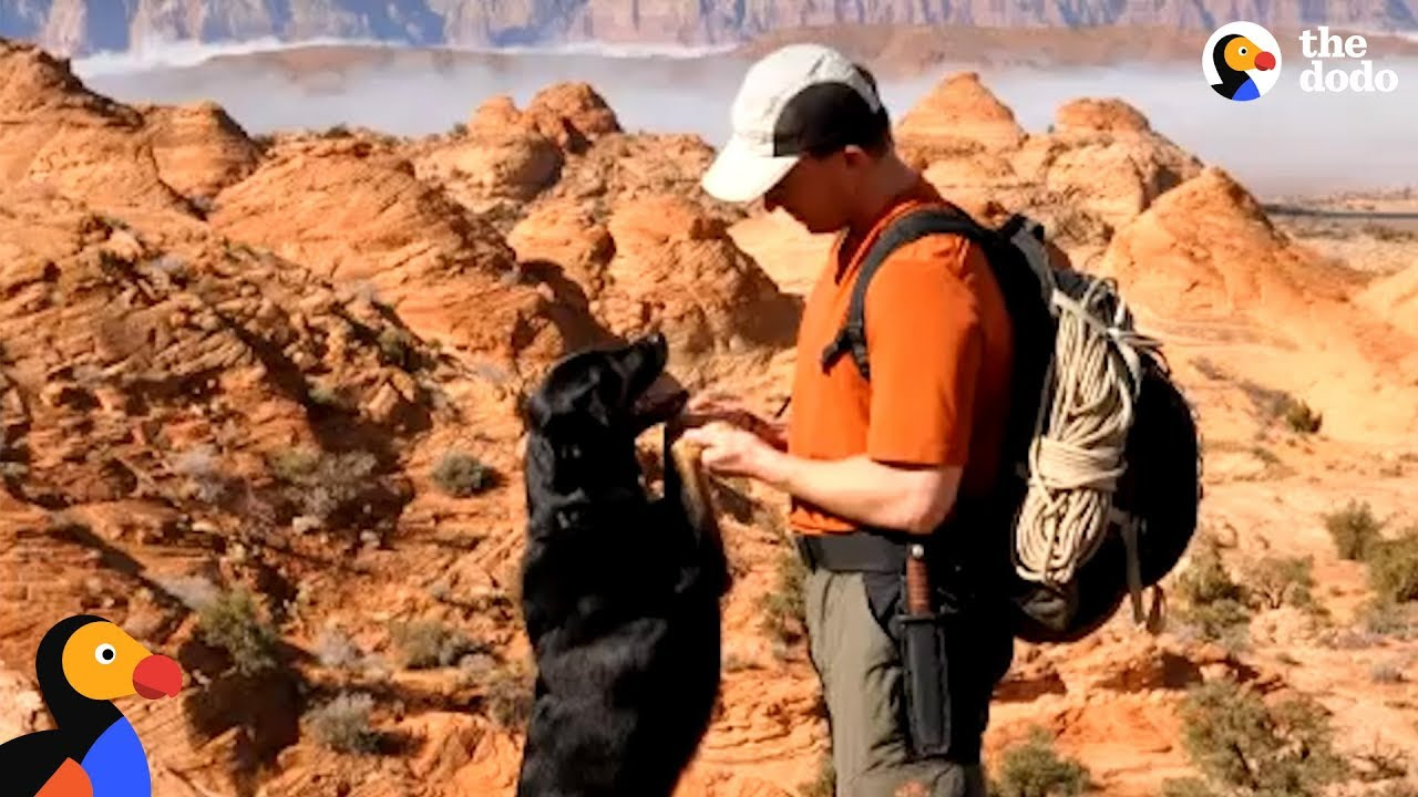 Guy Rescues Puppy Abandoned In Canyon