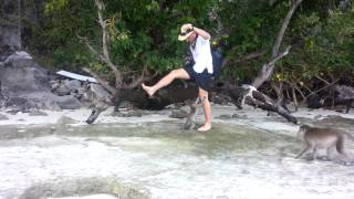 Monkey Beach Koh Phi Phi, Thailand