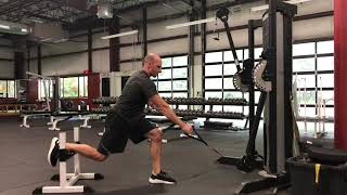 EricCressey.com: Rear Foot Elevated 1-arm Low Cable Row