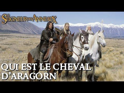 Seigneur des Anneaux : Arod VS Hasufel - Le Cheval d'Aragorn poster